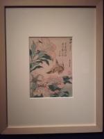 Kanarek i magnolie, Utamara